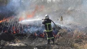 Пожар в селе Раевка уничтожил 15 га сухостоя, дачные домики и хозпостройки – МЧС