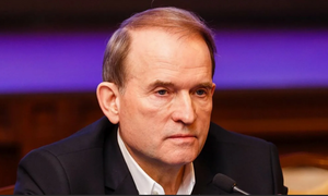 LPR offers to replace Kiev rep in humanitarian subgroup with Medvedchuk - Kobtseva