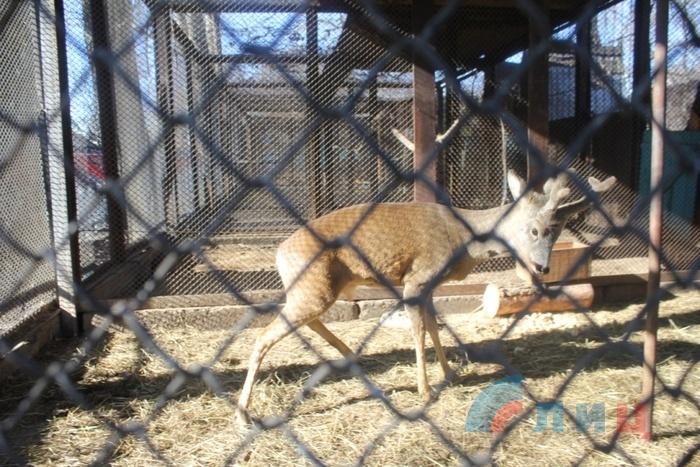 """Зоопарк Луганского ГКП """"Парк им. 1 Мая"""", 29 марта 2016 года"""