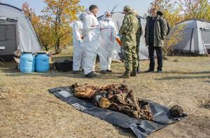 Спецгруппа начала извлечение останков жертв ВСУ из захоронения на окраине Луганска