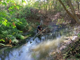Экологи устранили восемь заторов на реке Белая в Лутугинском районе