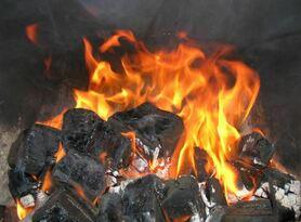 Rescuers extinguish coal mine fire in Krasnodon