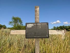 Спецгруппа за время работы в Первомайске извлекла из захоронений останки 80 жертв ВСУ