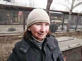 """Руководитель луганского приюта для собак """"Дай лапу"""": """"Планы есть, на месте стоять не будем"""" (ФОТО)"""