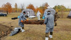 Спецгруппа извлекла из захоронения в районе Видного останки 44 жертв ВСУ